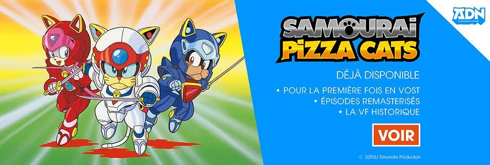 adn_pizzacats_carrousel